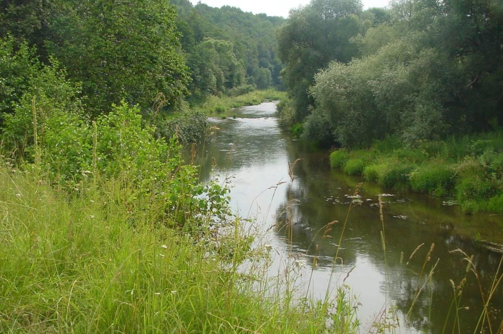 river0001.jpg