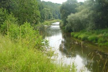 Река Таруска